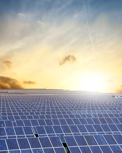 solar-panels-for-bio-energy-grimnetwork